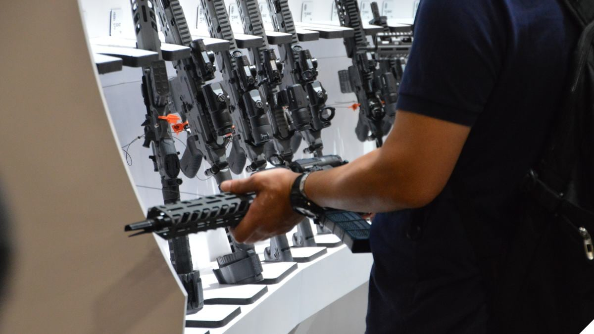 Bipartisan Gun Seizure Bill Promised in Congress