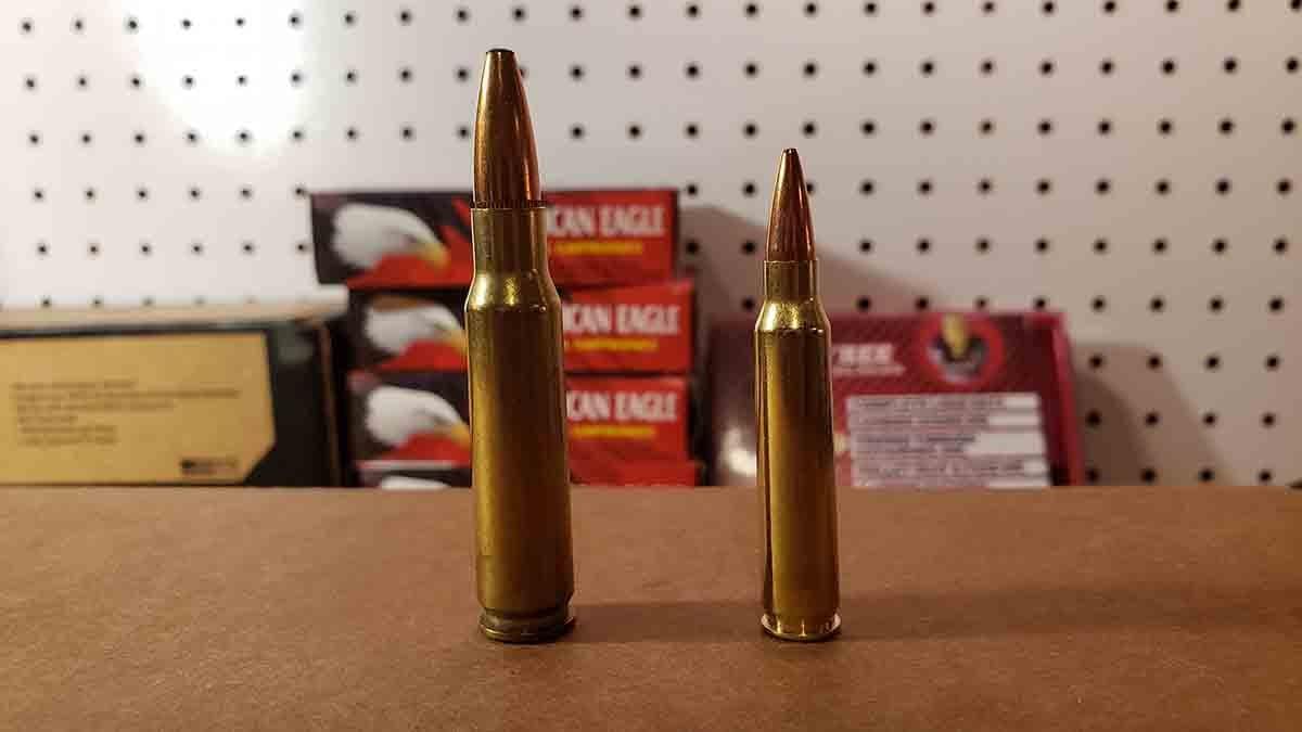.308 vs .223 for Hunting Whitetail Deer