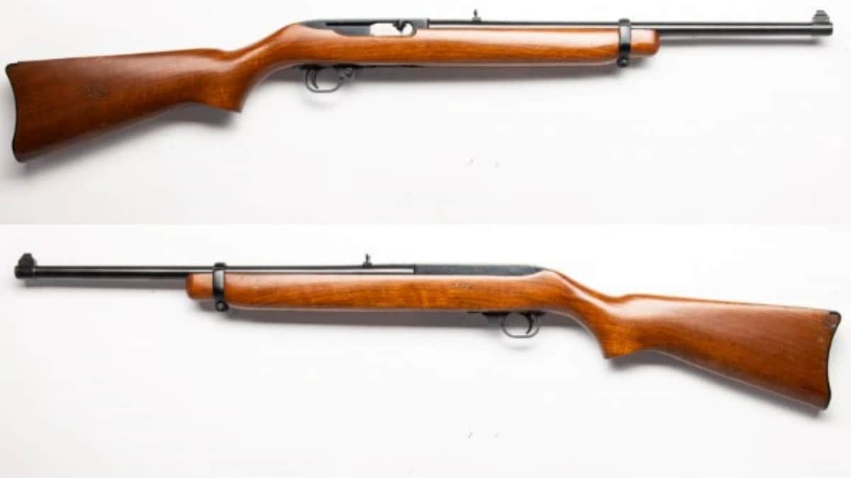 Ruger 10/22? Nope, this bad boy is chambered in .44 Magnum.