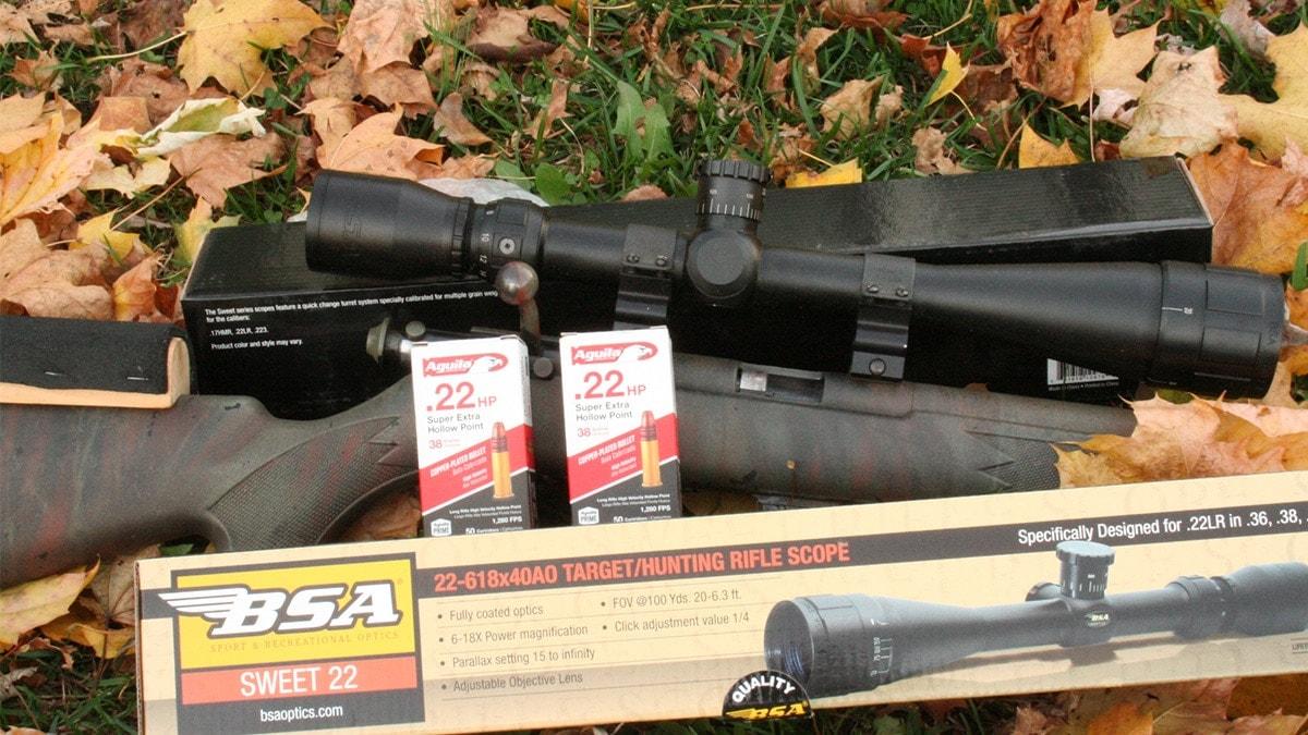 varmint scopes