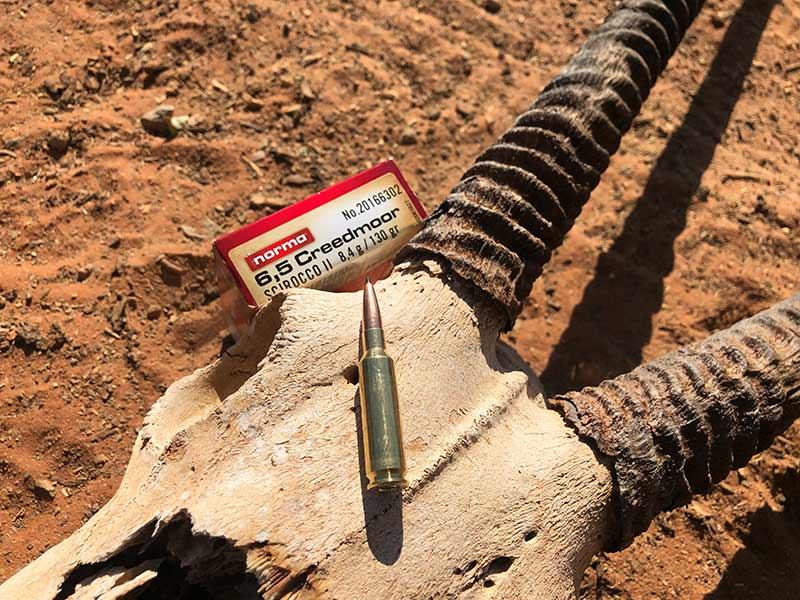 Norma ammunition