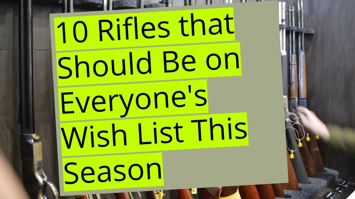 Rifles that Should Be on Everyone's Wish List This Season