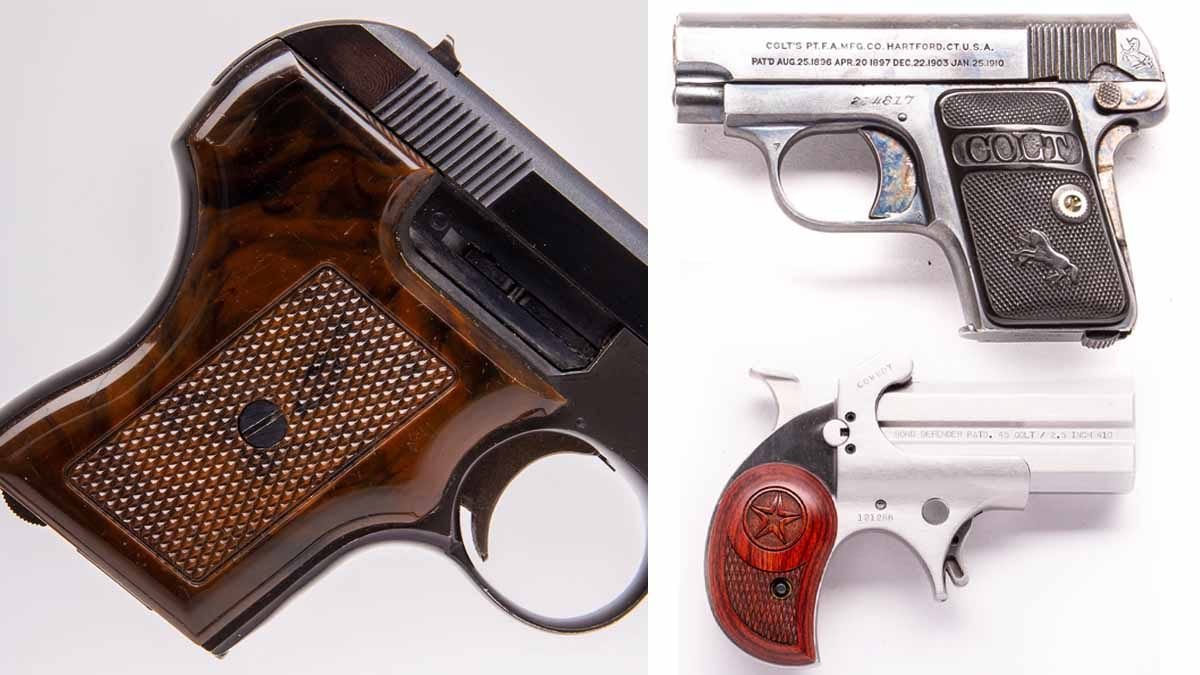 10 Pocket Pistols at a Price Everyone Will...