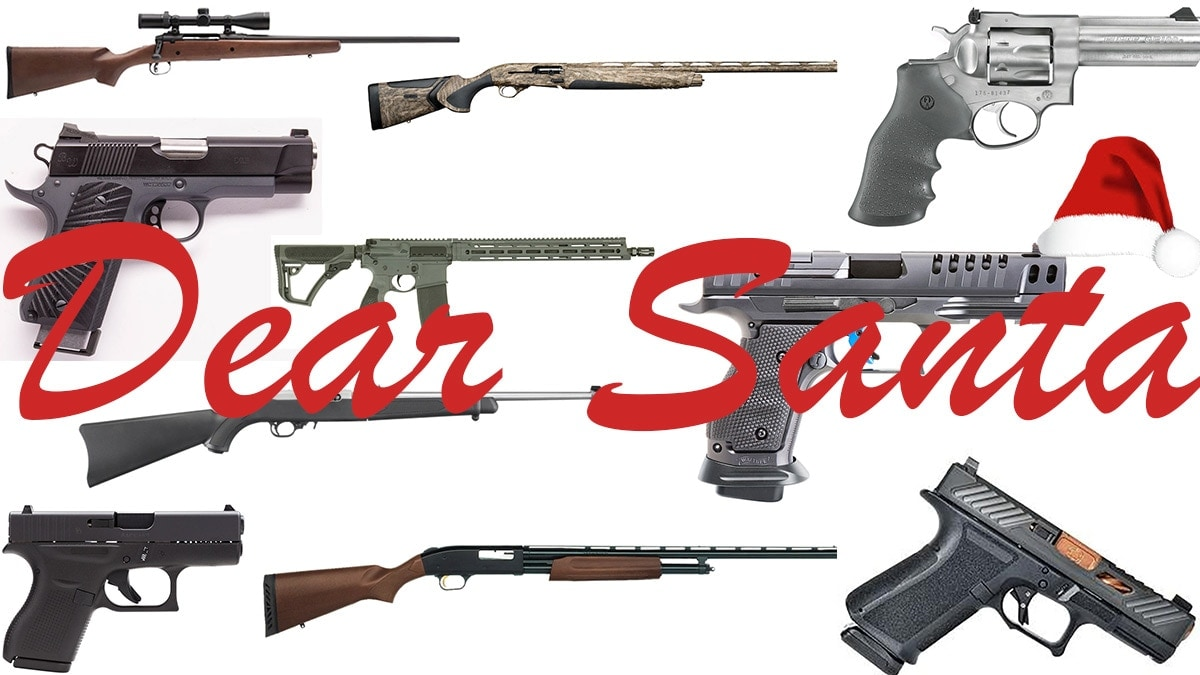 Guns to Put on Your List to Santa This...