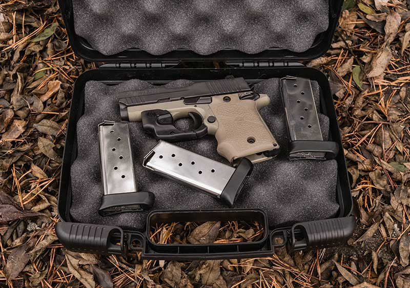 sig sauer p938 in case with 3 magazines
