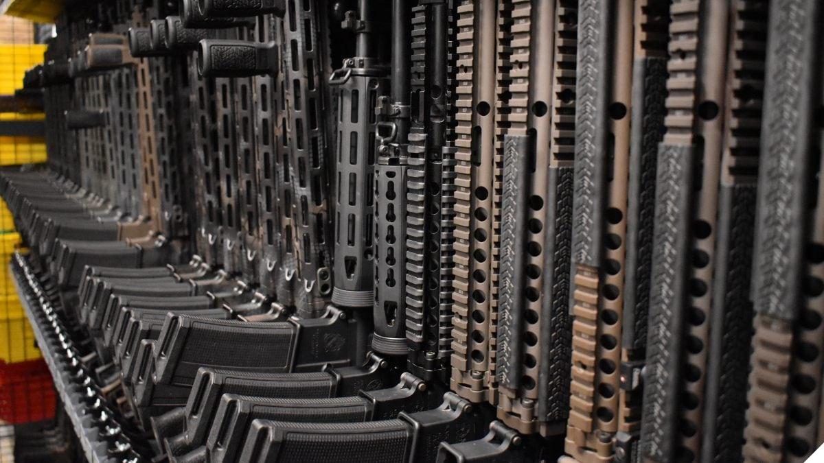 Florida Ballot Initiative to Ban 'Assault Weapons' Falls Far Short
