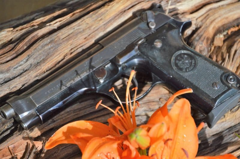 Beretta 92S by a Asiatic Hybrid Lily