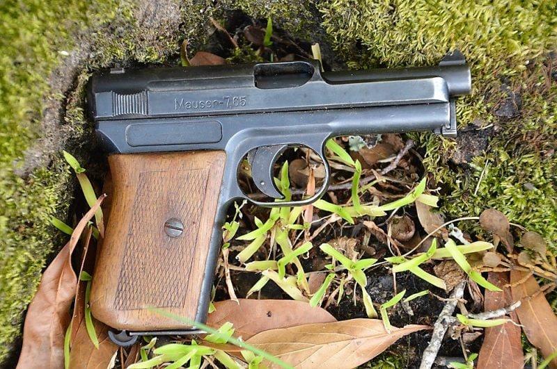 Mauser M1914 pocket pistol on a mossy tree trunk