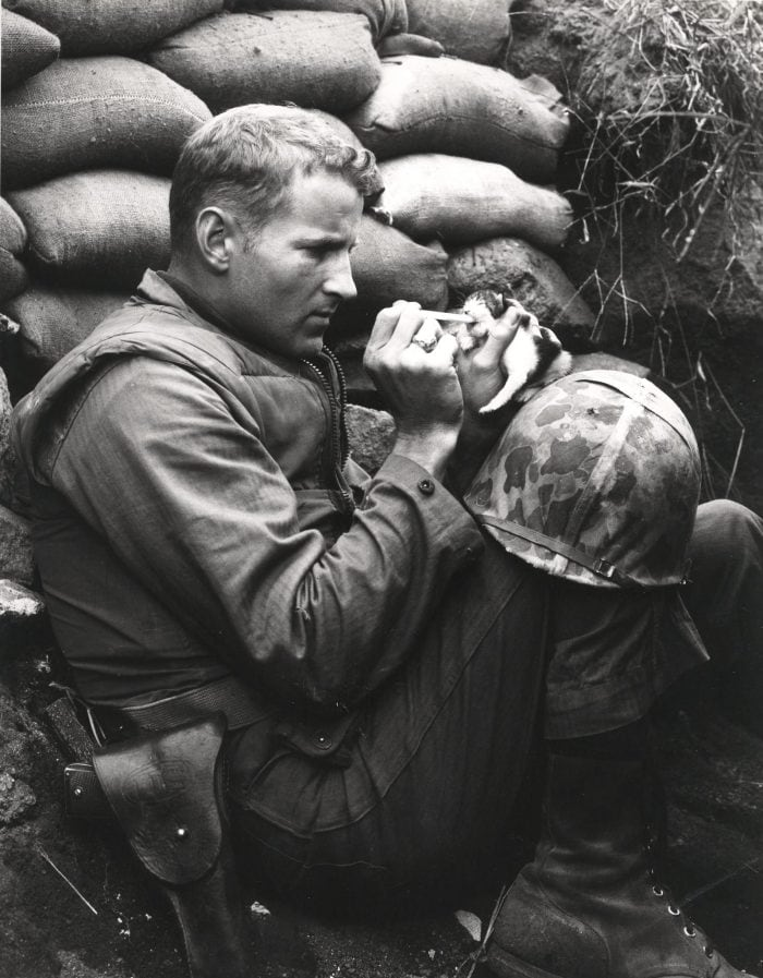 "This famous image shows M1911-armed Marine Sergeant Frank Praytor and ""Miss Hap,"" in Korea, October 1952, with the baby kitten so named because she was "" born at the wrong place at the wrong time."" (Photo: U.S. Marine Corps Archives)"